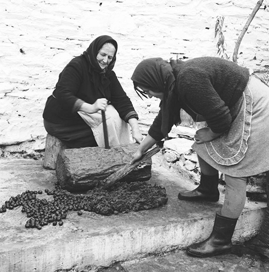 Old women smashing olives